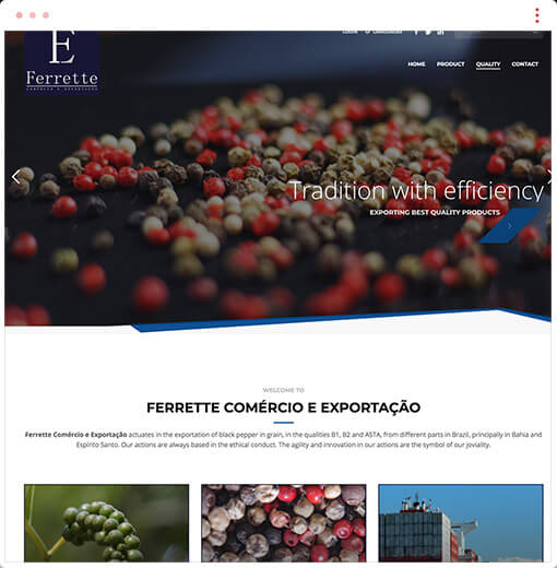 Affordable web design and development company in Ottawa