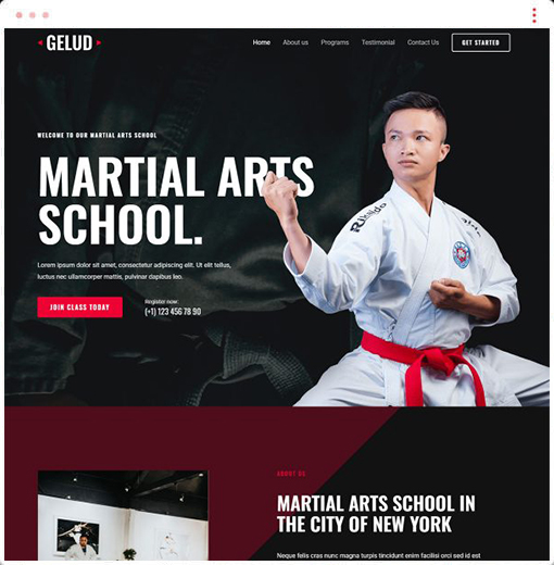 Martial Arts Web Design Company